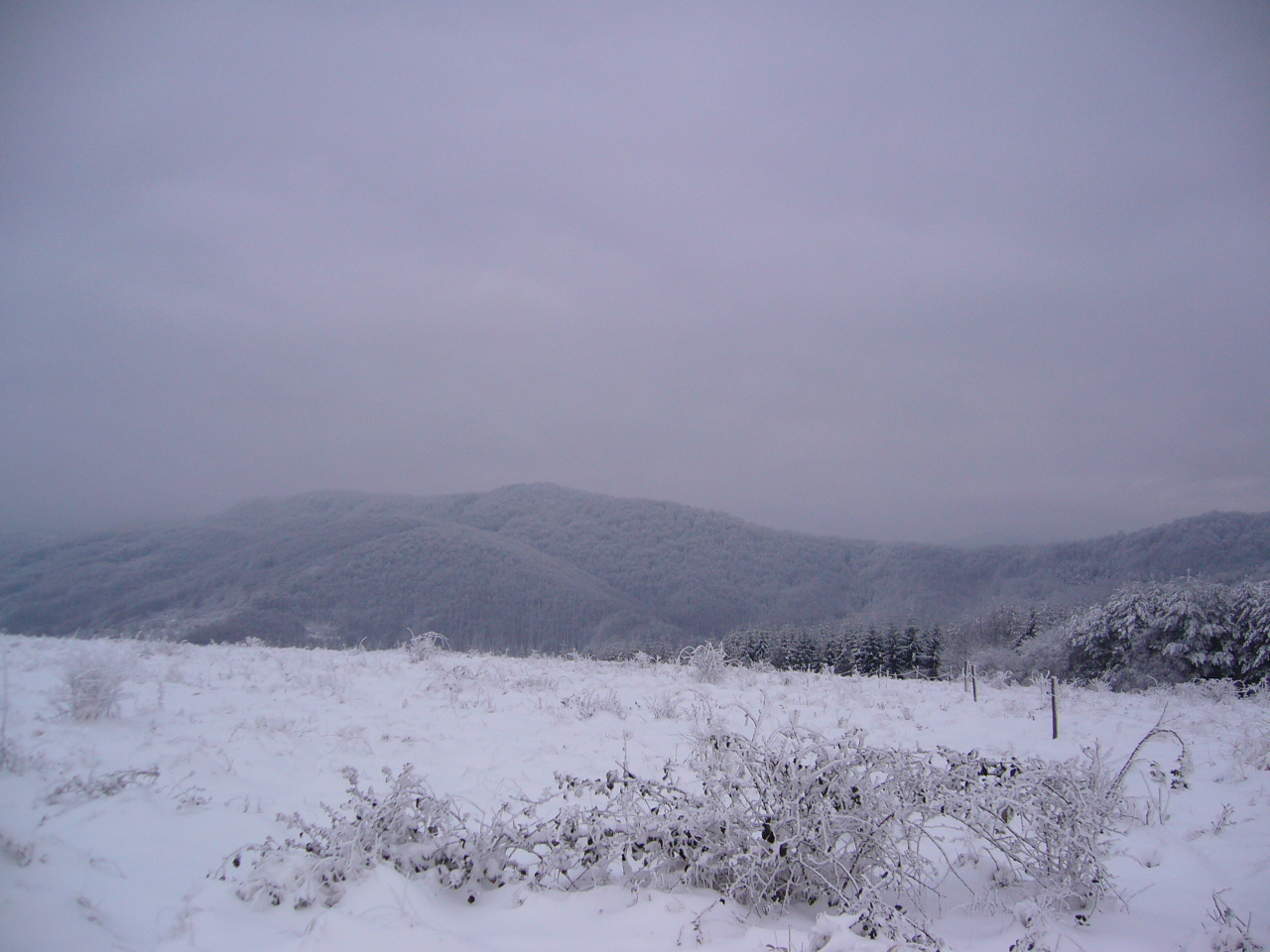 A PERSPECTIVE PIECE OF LAND 2800sq m FOR SALE 8km FROM GABROVO 500m FROM HOTEL