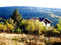 Обл.Перник, в землището на с.Кладница, в.з. Разкръске, продавам ПИ-950м2