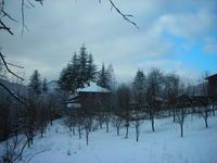 Дворно място и къща в с.Дивчовото(Ловешка област)