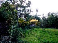 Дворно място за къща в Бояна