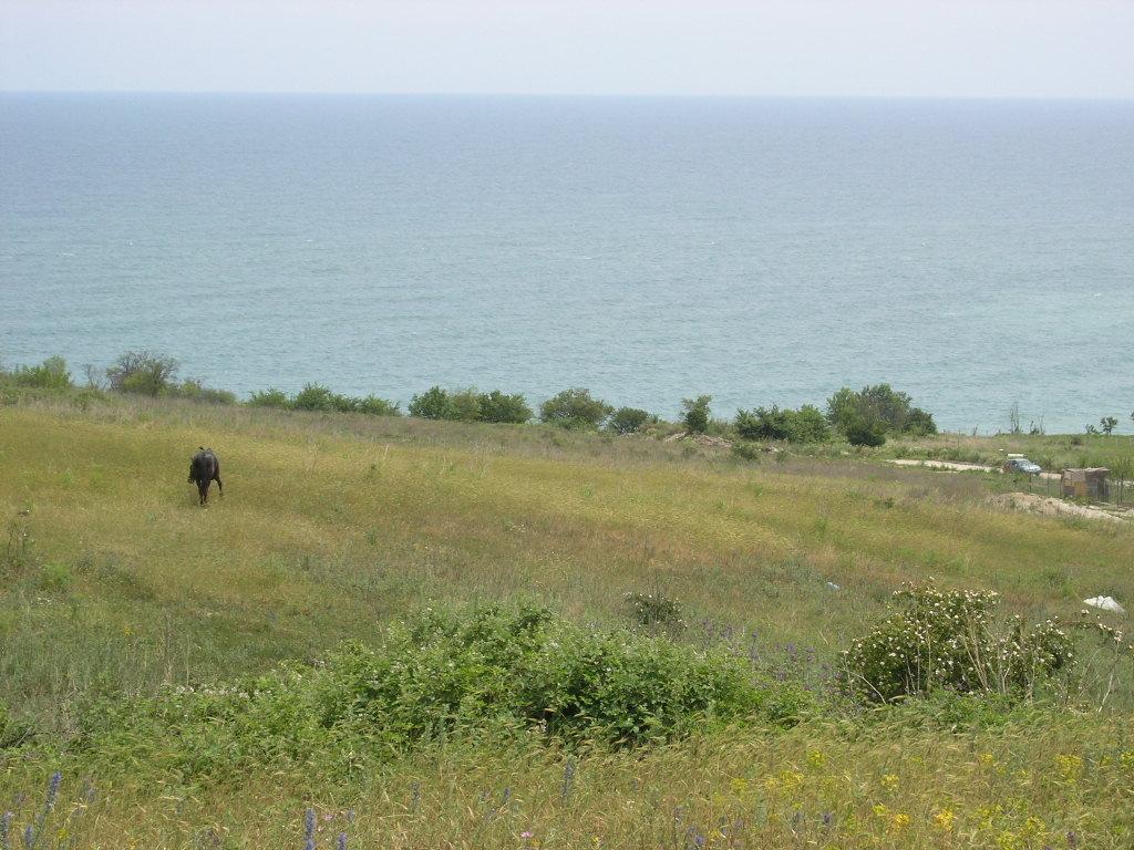 The huge plot of land in Byala