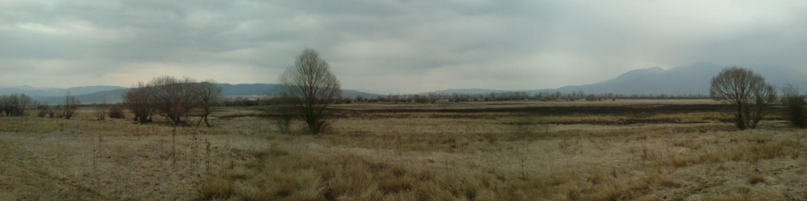 Agricultural land for sale among Bansko,Banya and Razlog.