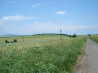 Земеделска земя (10 декара)гр.Бургас с.Димчево