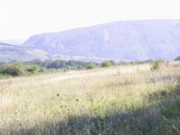 predlagam zemedelska zemq v selo Draganovci/Gabrovo/ pdhodqshta za vilno selishte