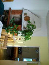 Продавам вила в предбалканско село.