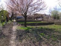 Къщи с 400кв.м. разгъната площ и 2000кв.м. парцел
