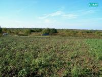 Huge Plot of Agricultural Land Suitable for Industrial / Business Development. Perfect Environmental and Geotechnical Conditions. Price 5 EUR/sq.m.