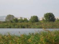 Land for sale near Bourgas lake of mandra from Bulgproperty