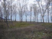 Първа линия парцел, на плаж до регулация, м. Митков Мост
