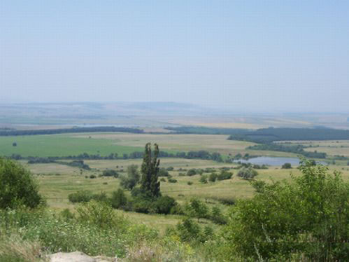 Plot with size 5000 sq m situated 35km away from Varna town and the Black sea coast , in typical Bulgarian, traditional village, suitable for investment.Admit to regulation.