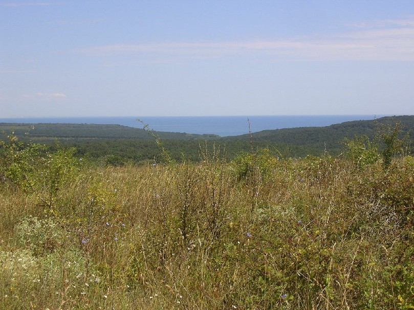 Plot near regulation at 3.5 E/m2, 20 km. away from Varna and 2800m. from the beach!