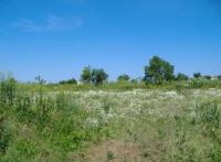 Земеделска земя в Невша
