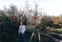 продава плододаваща овощна градина Добрич