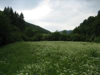 ka6ta stara s dvor 2005 dekara do reka bez tok vodai pat v selo ribarica love6ko