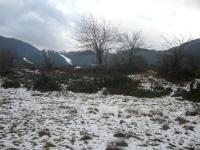 Продавам Земеделска земя в Банско 876 кв.м.,35000 EUR (40 EUR кв.м)
