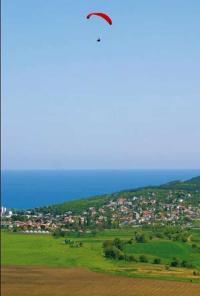 Land for sale rogachevo