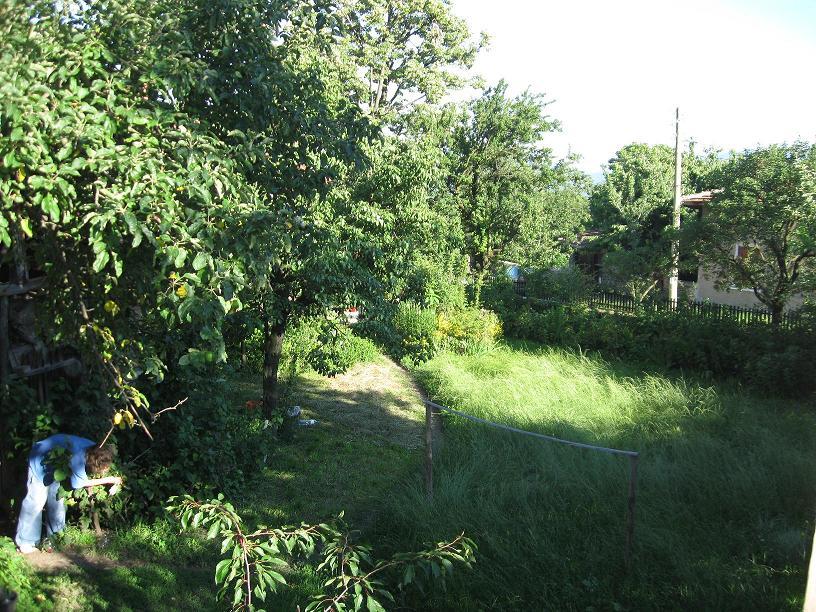 Продавам дворно място с паянтова сграда в центъра на с. Църквище, обл. София