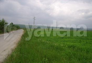 земеделска земя, Цонево