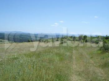 земеделска земя, Арбанаси