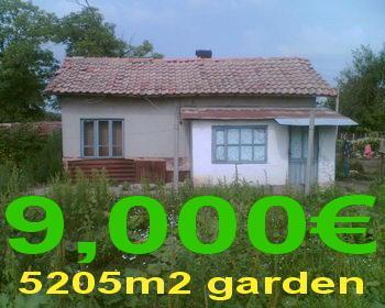 Къща с голям двор 5205м2 село ПЧЕЛАРОВО(Добрич)