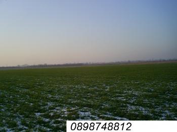 Продавам обработваема земеделска земя 20дка и 300кв.м в с.Оризари на 5 км от гр.Пловдив със сонда близо до главен път.