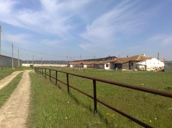 Продавам стопански двор Балчик с жилищна помещение - къща и стопанска постройка - конюшня.