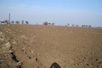 Продавам земеделска земя 31 дка, собствен водоизточник, ток, до международен пьт Е-87Шабла и овощна градина Шабла