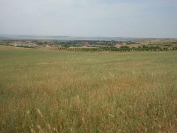 Bulgaria, village Rudnik, near to city Bourgas and Black sea. A plot of land 1007 square meters, with view at airport