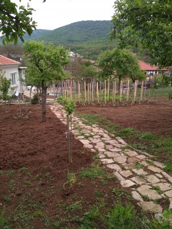 Продава парцел в село Ново село, област Стара Загора, 1 020 кв. м. - 12 500 EUR.