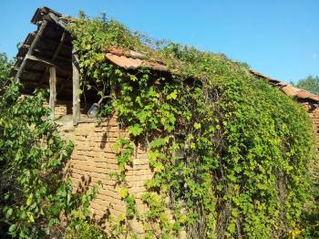 Продава Къща в Садовец, област Плевен