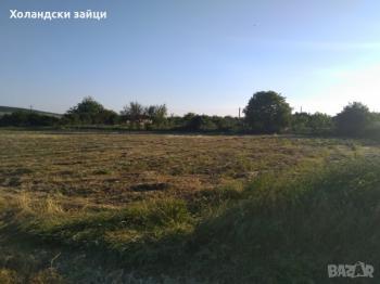 Дава под наем Парцел в село ВЕТРИНО, област Варна